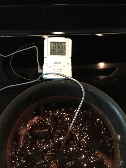...over an hour later, it's reached the proper temp